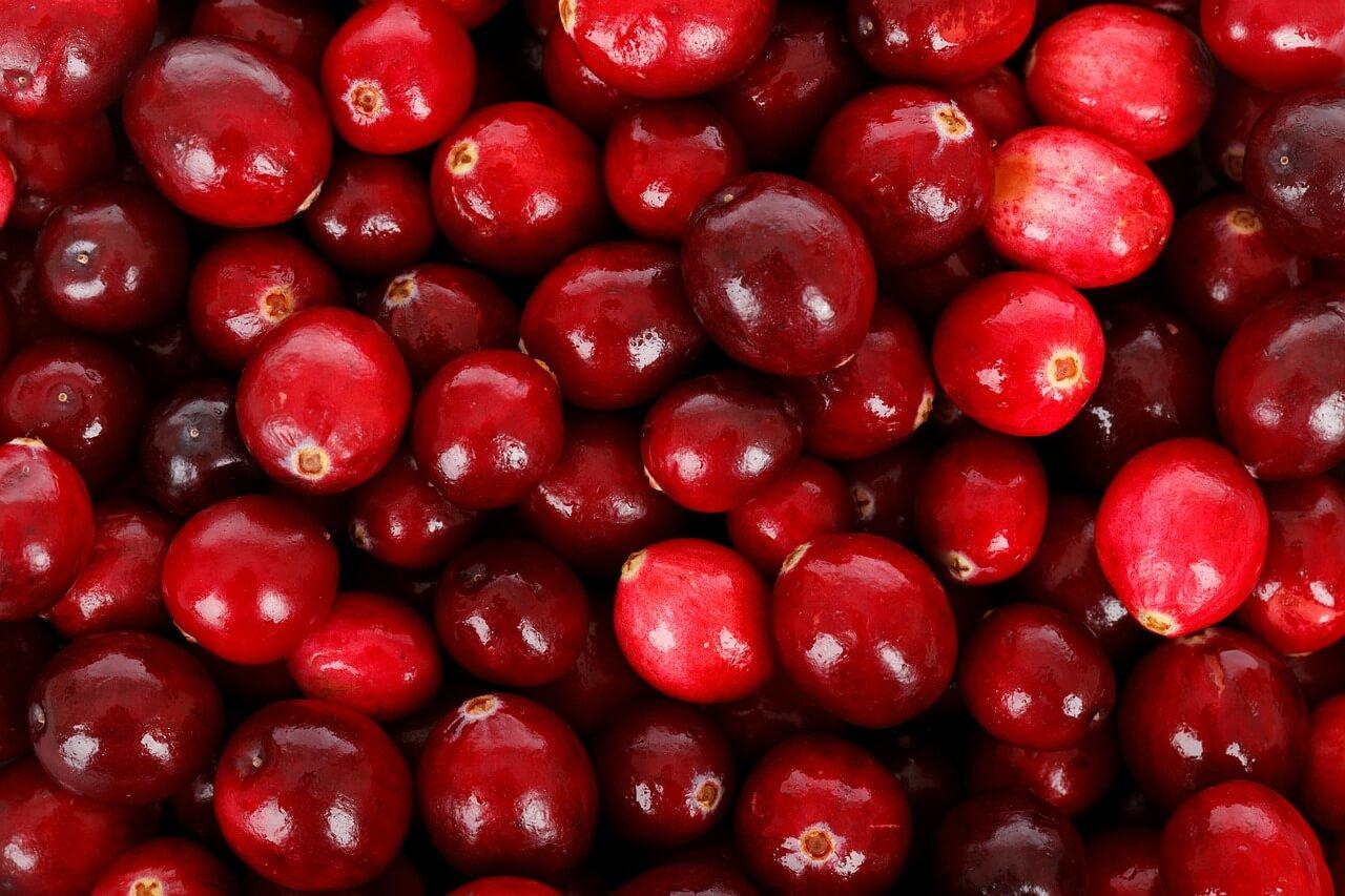 Wie Cranberry die Blase unterstützt