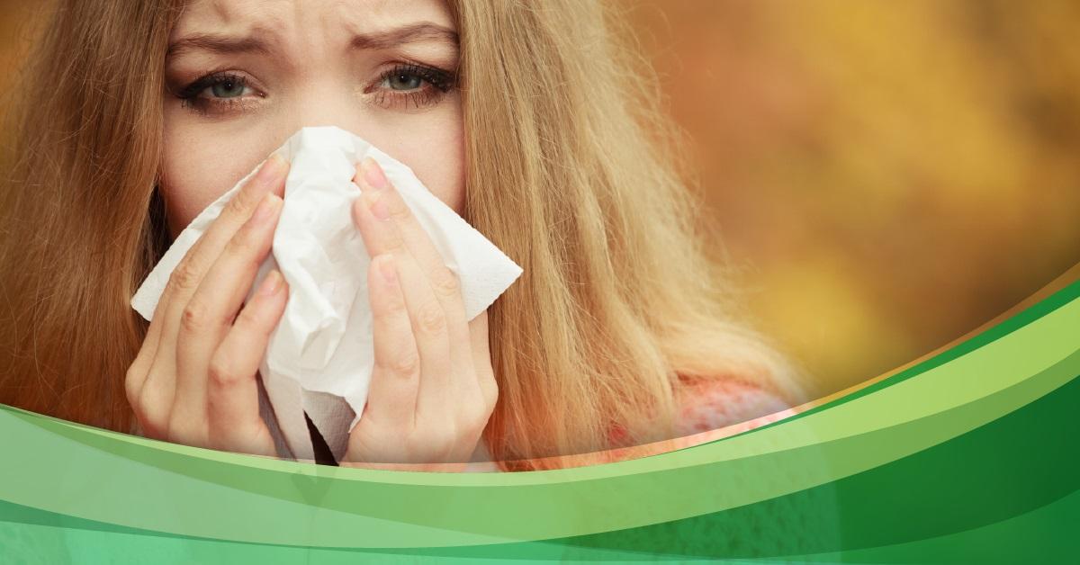 Apomedica Hausmittel Fibel Tipps gegen Wehwehchen