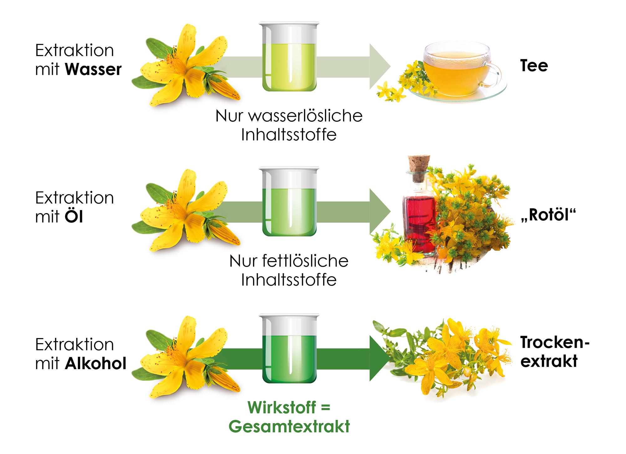 Johanniskraut Extrakte