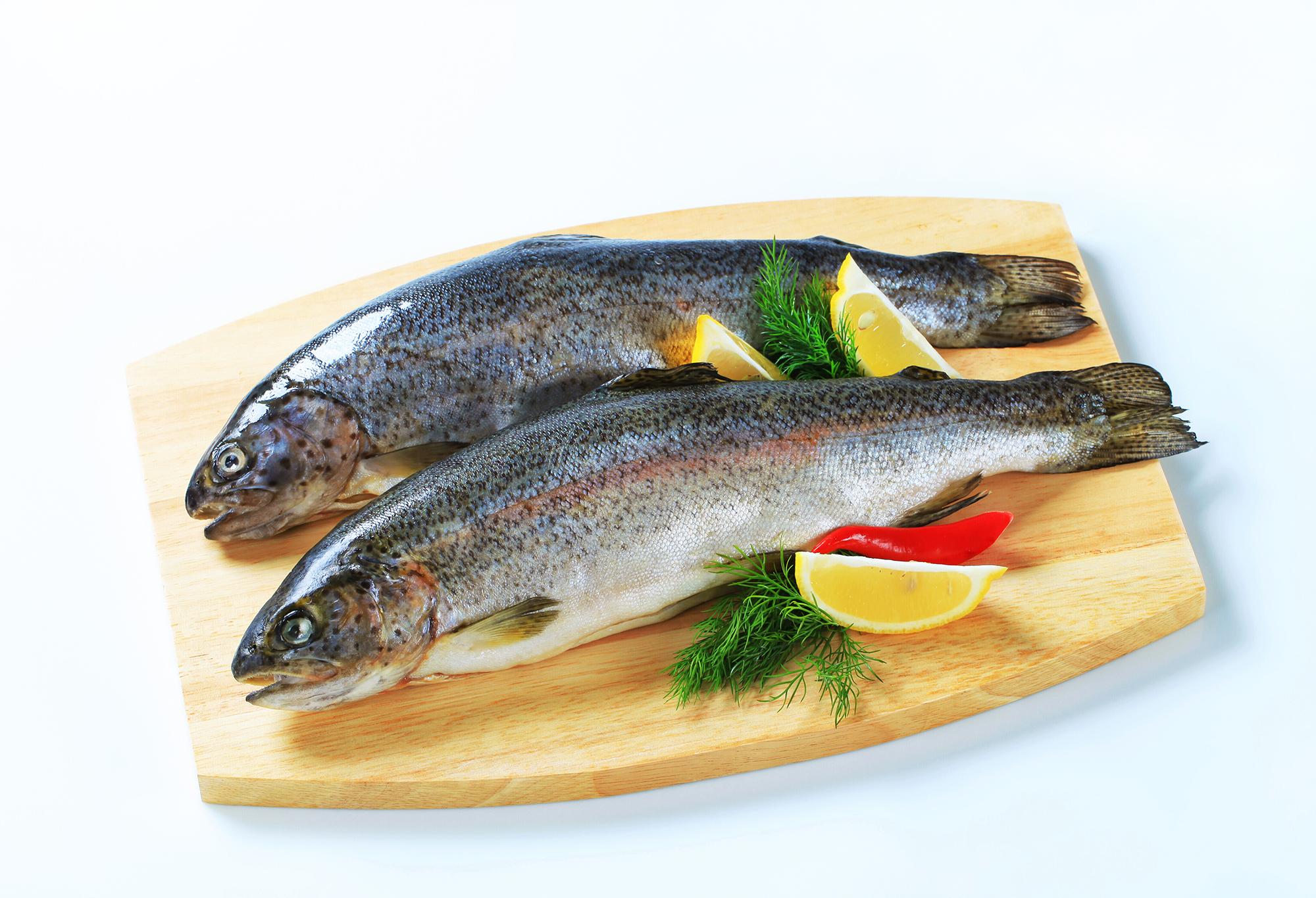Fische sind gute Omega 3 Quellen