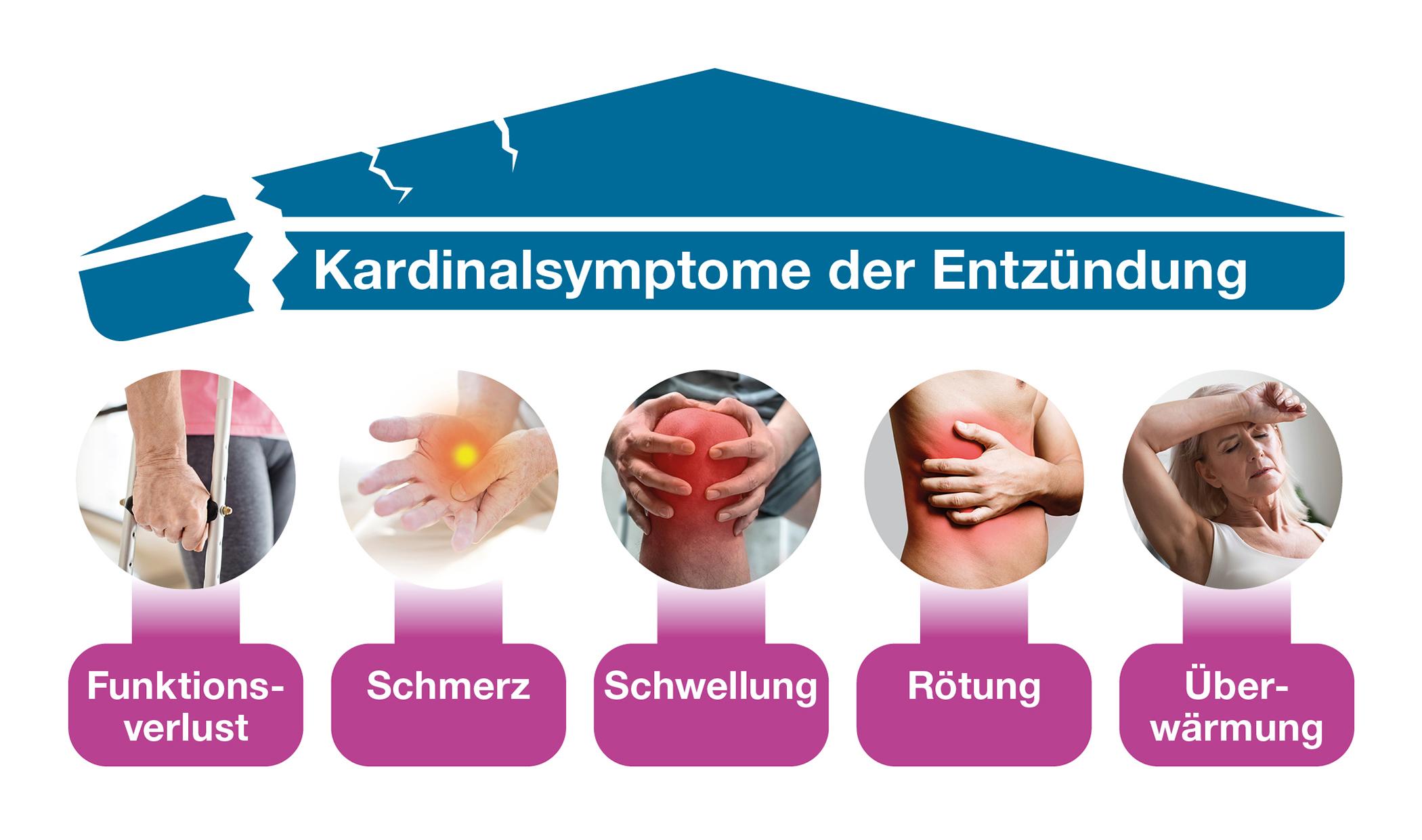 Kardinalsymptome der Entzündung