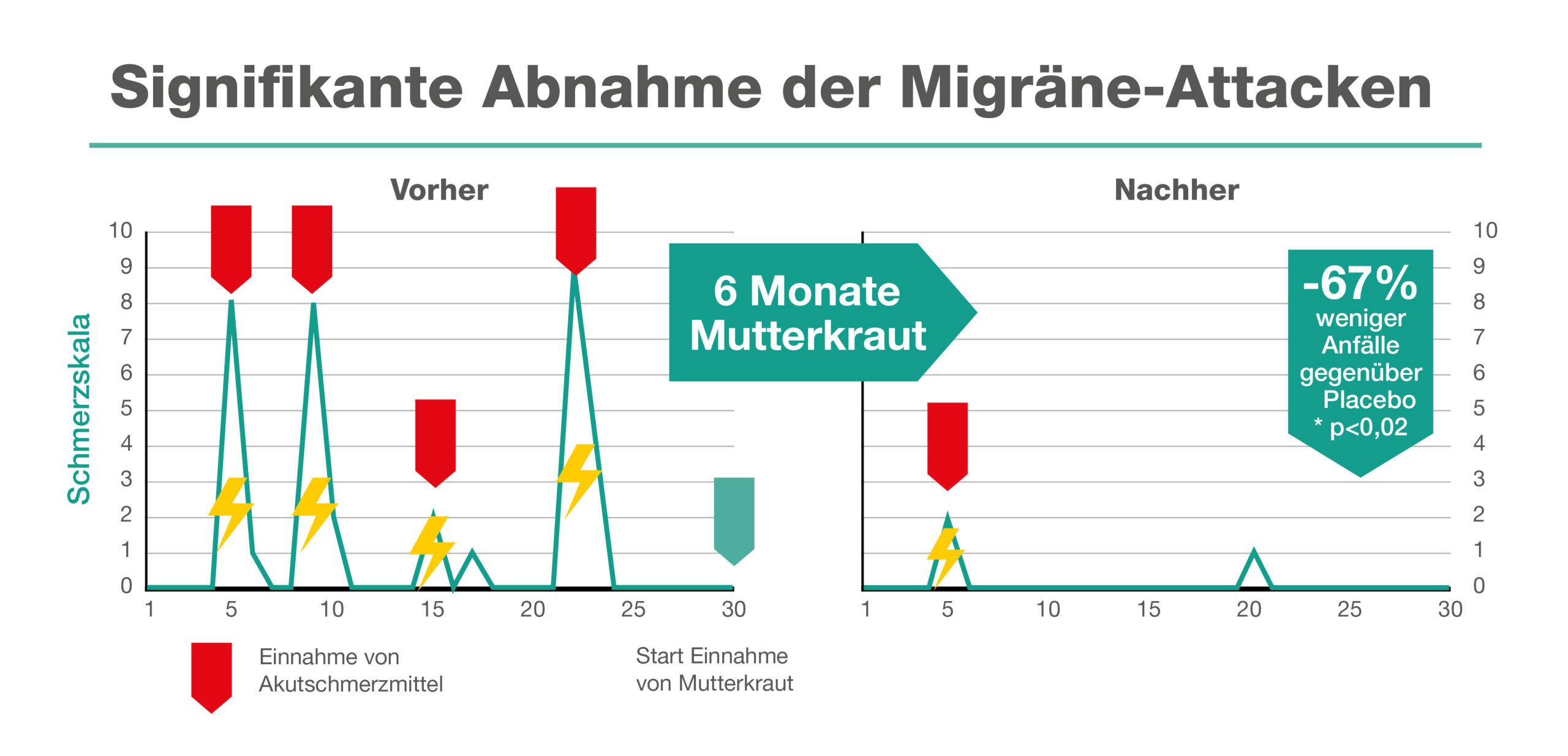 Signifikante Abnahme der Migräne-Attacken bei Mutterkrauteinnahme