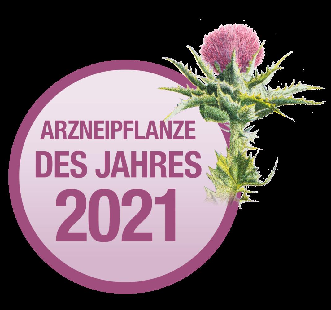 """Mariendistel ist die österreischische """"Arzneipflanze des Jahres 2021"""""""