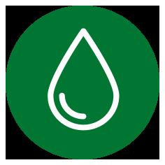 Die Nieren regulieren den Wasser- und Elektrolythaushalt im Körper.
