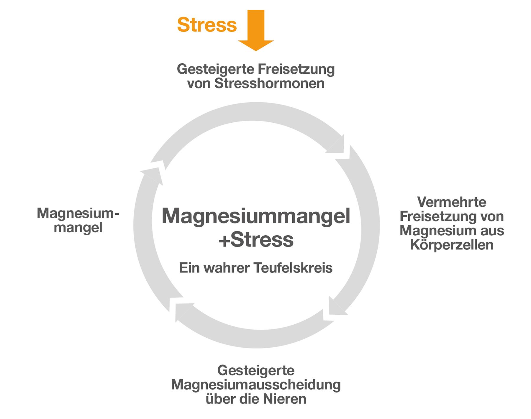Magnesium bei Stress