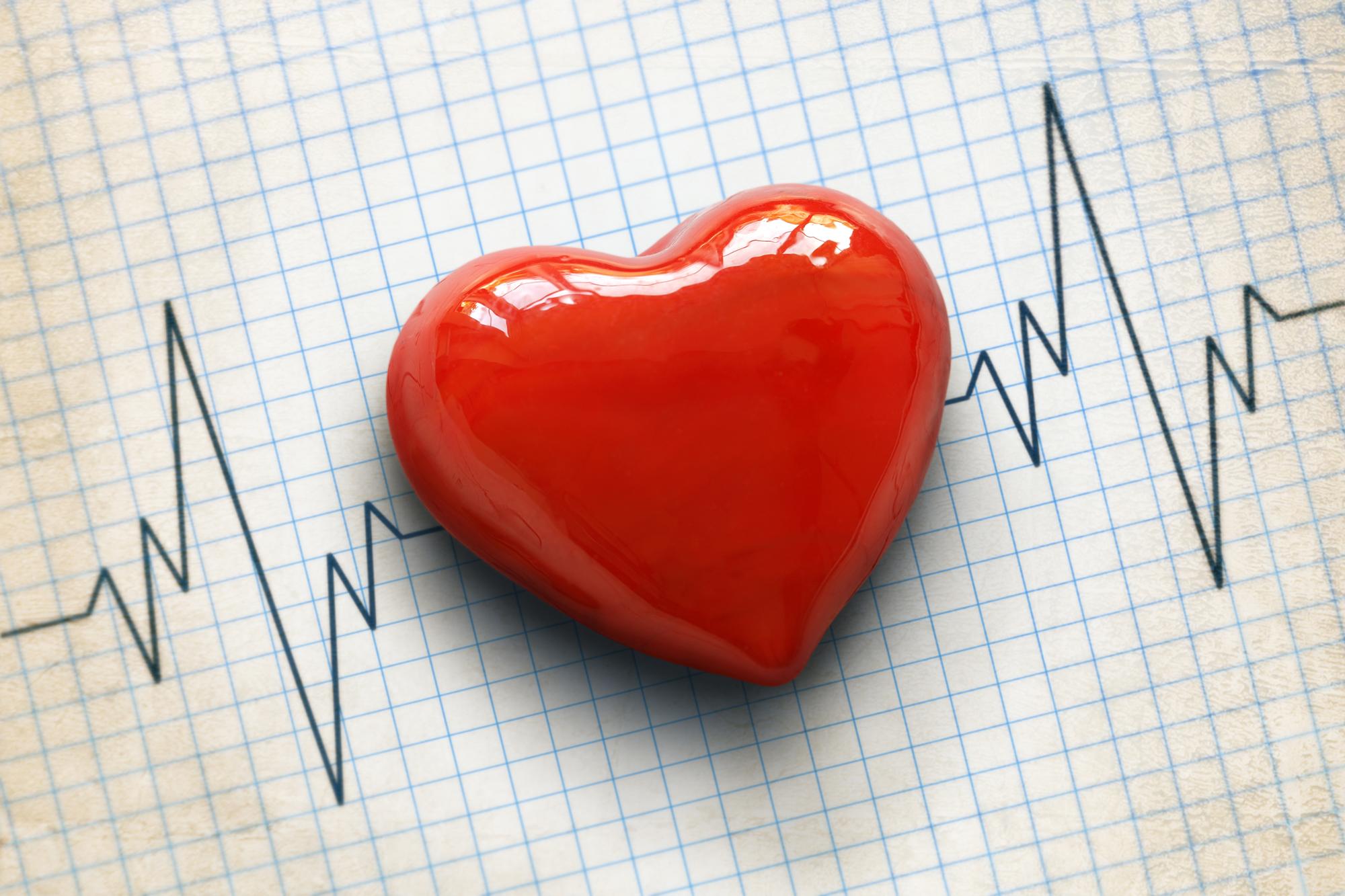 Magnesium und das Herz-Kreislauf-System