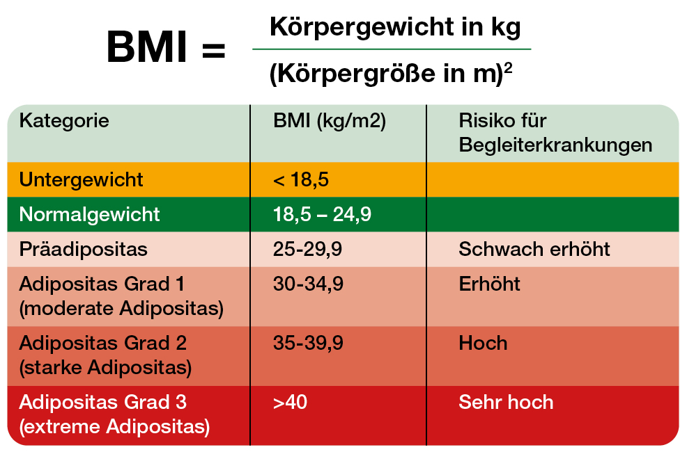 BMI (Body Mass Index) berechnen